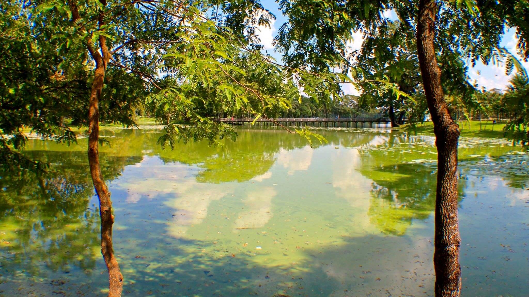 Myanmar Yangoon Park