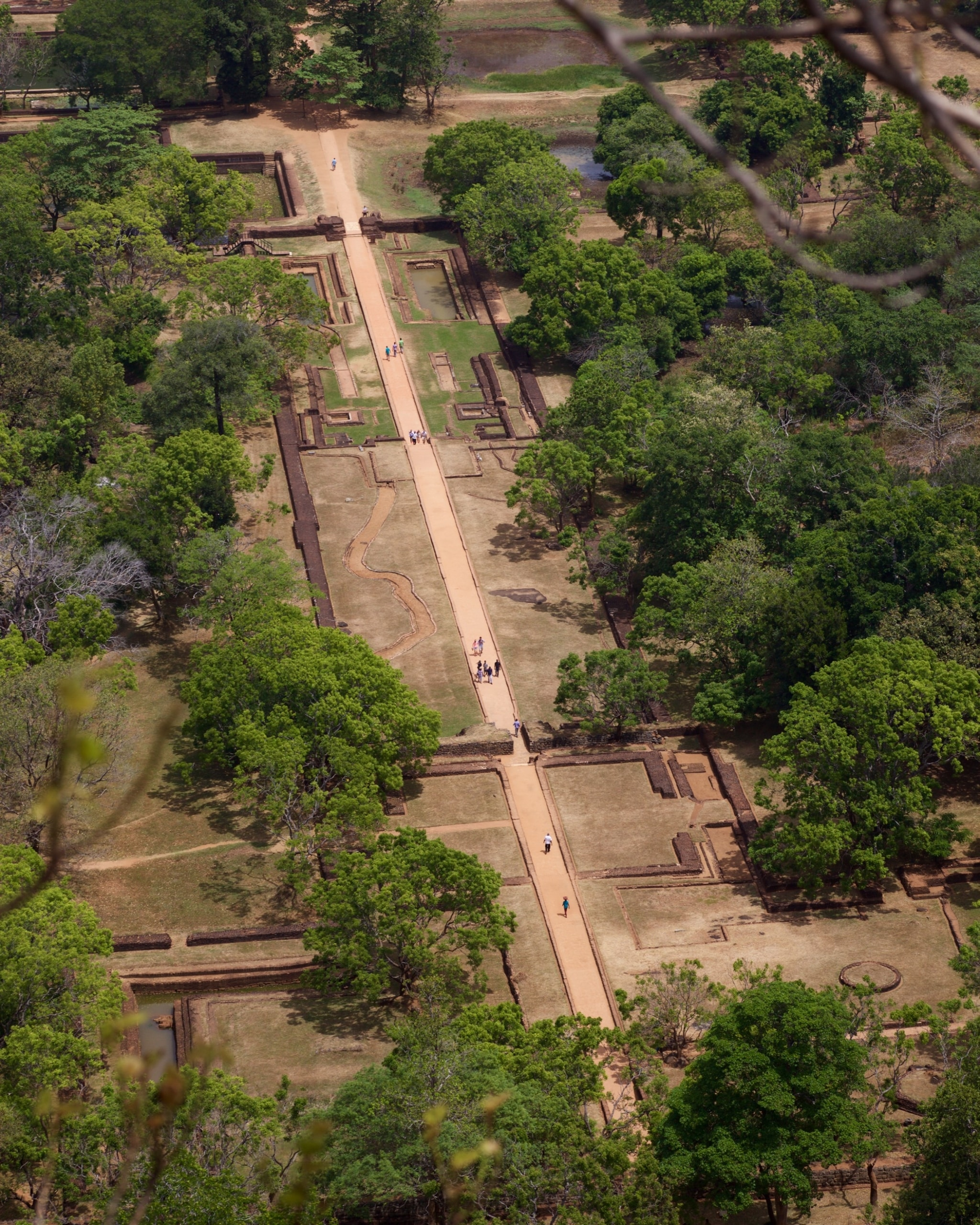 Sigiriya Rock Travel Guide Tips Times And Prices