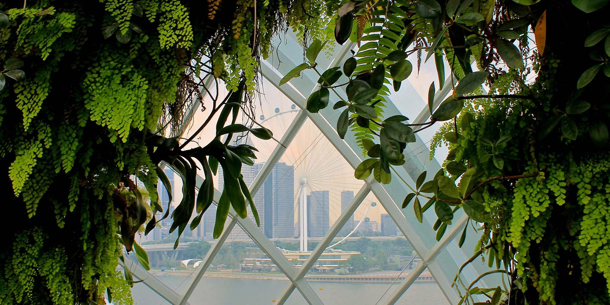 Singapore Gardens City View