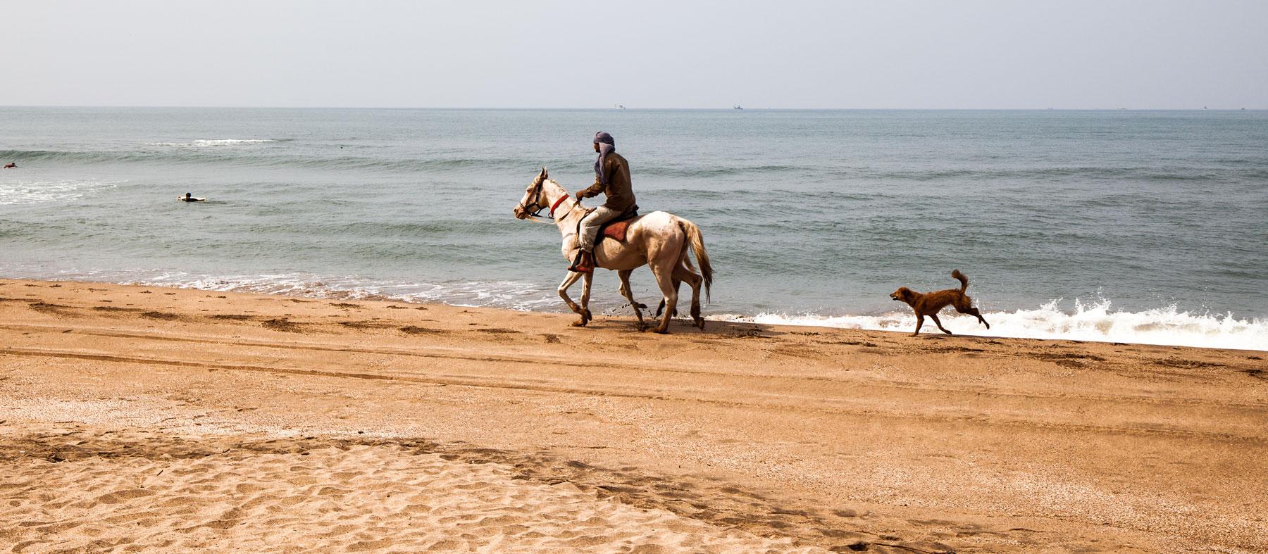 Agonda Beach Horse Ride