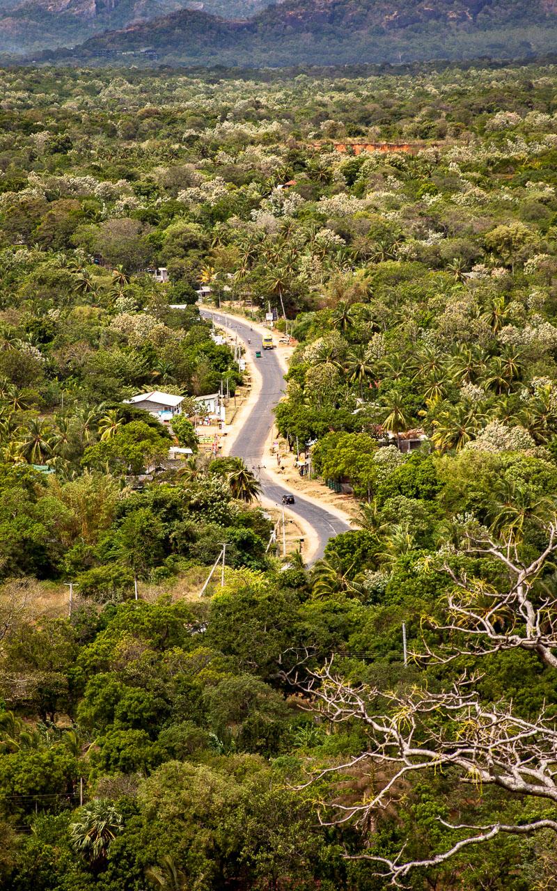 Dambulla Caves Cost