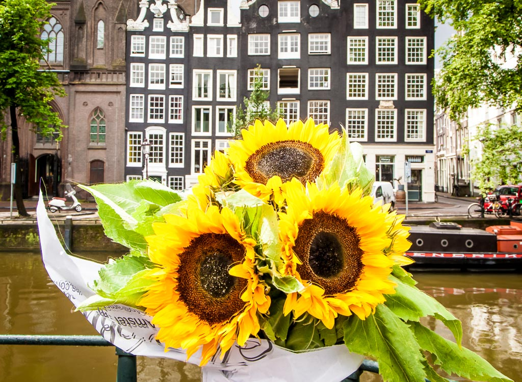 Flower Markets Amsterdam