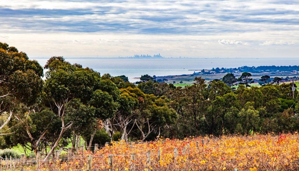 Bellarine Peninsula Melbourne