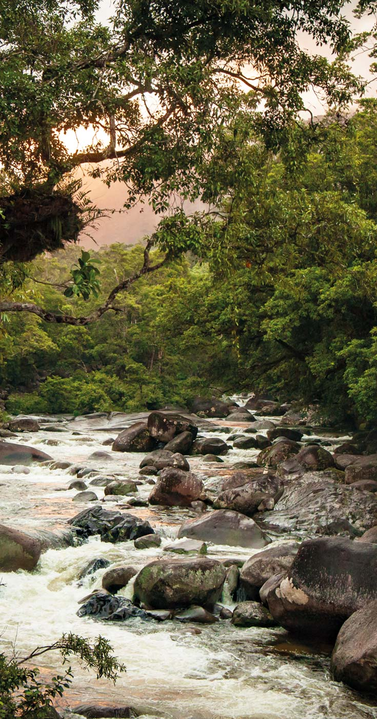 Sunset in Mossman Gorge