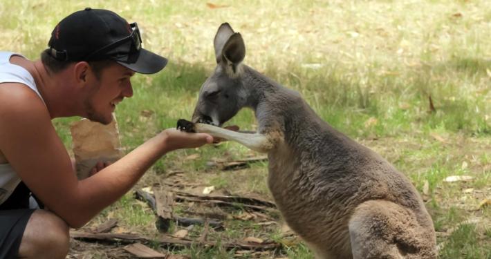 A kangaroo with Dan