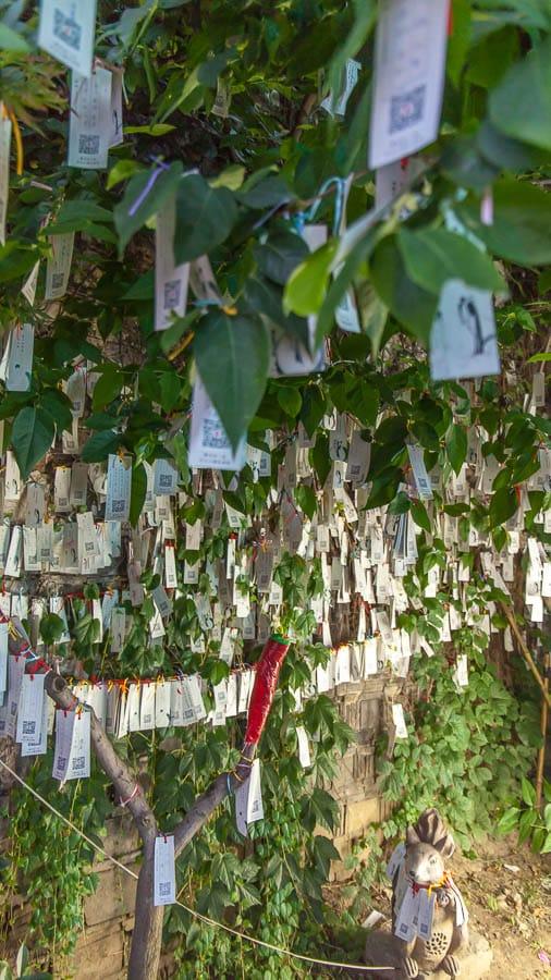 Prayer Flags Suzhou