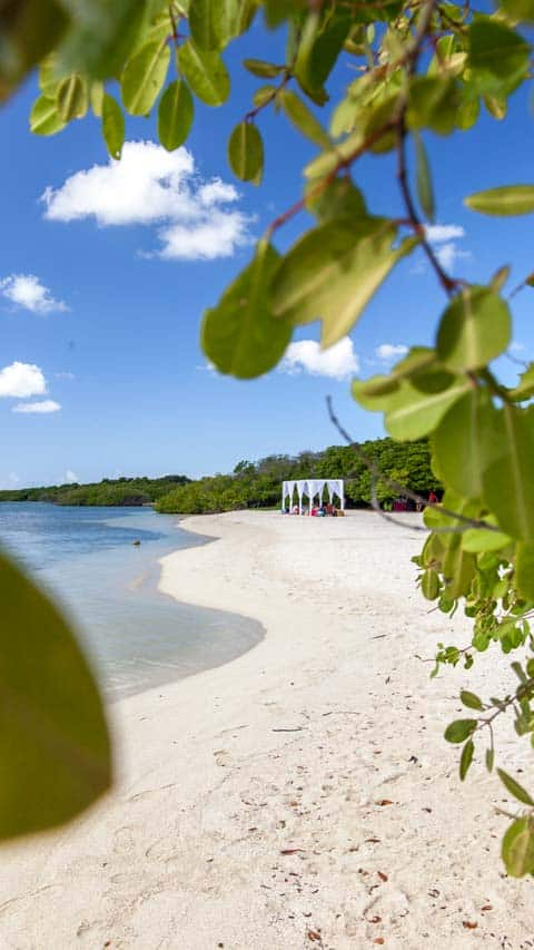 Aruba Beach Dinng