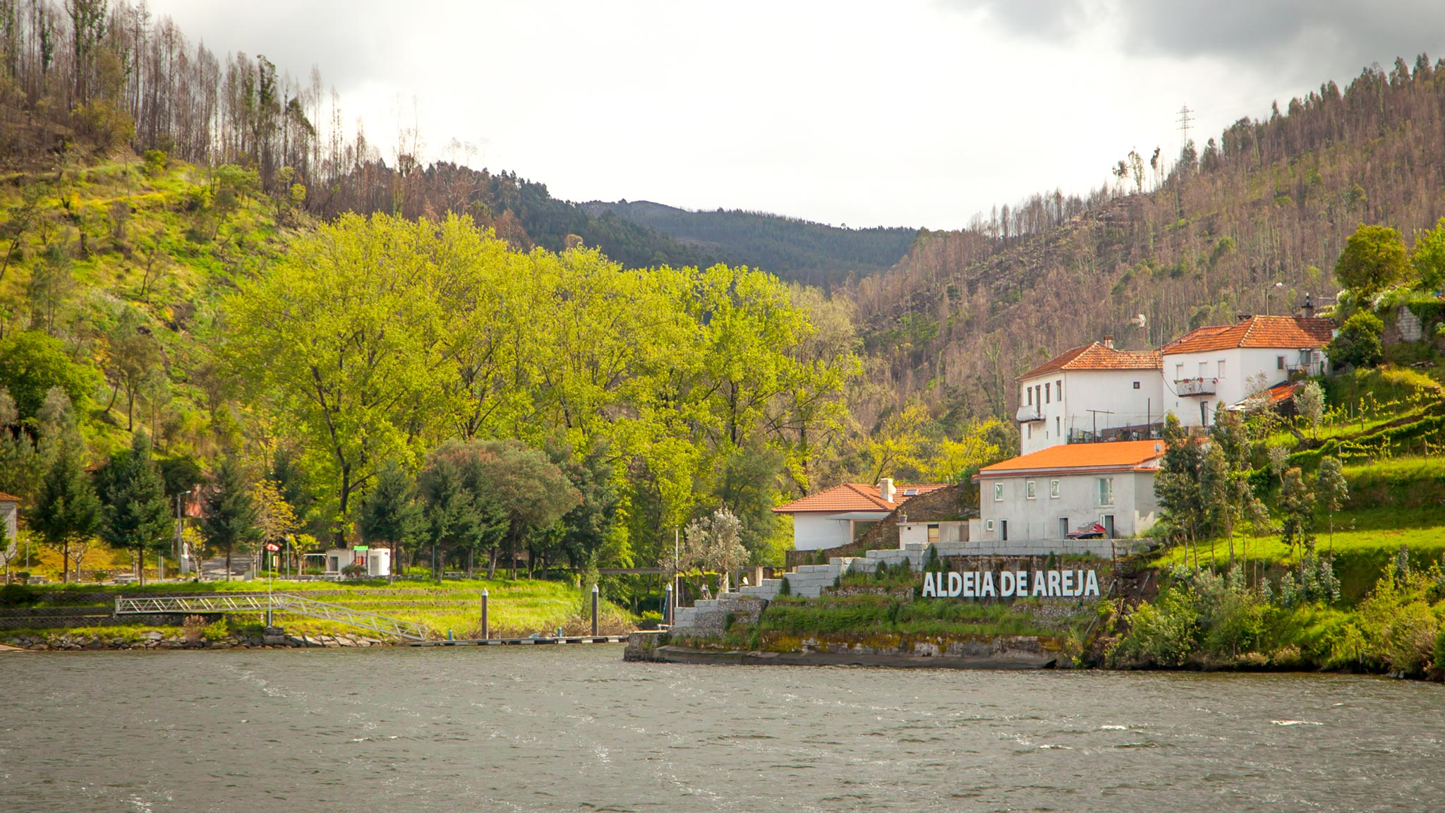 View from the boat on a Douro Wine Region cruise
