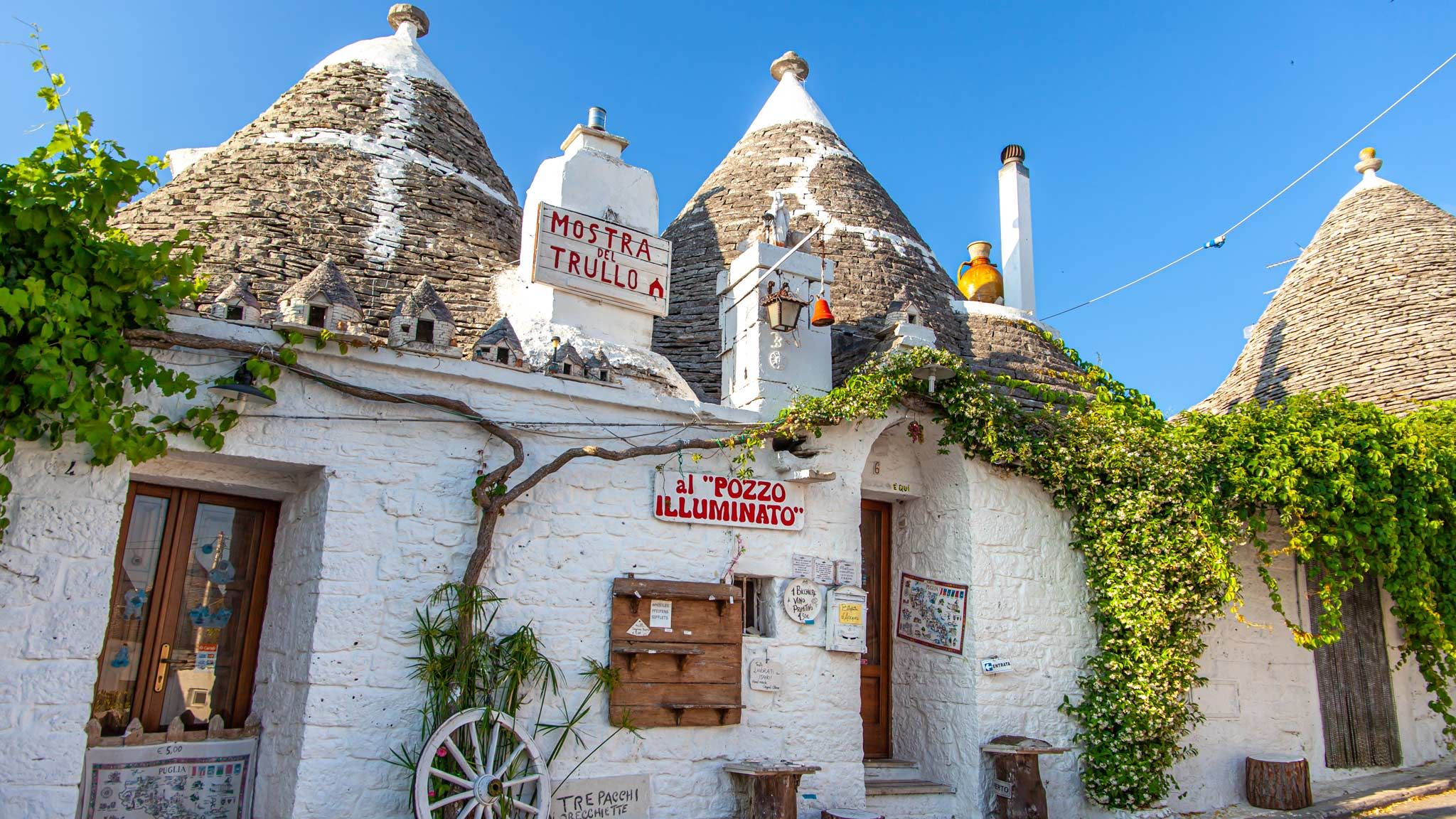 A line of white washed Trullo with conical roofs in Alberobello Puglia