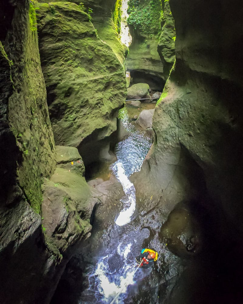 A green Canyon with water at the bottom and a man on a rappel in Dominica