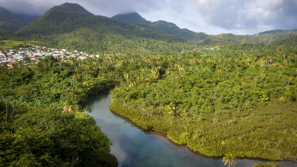 The Indian River as seen from above with the mountains of Dominica in the background