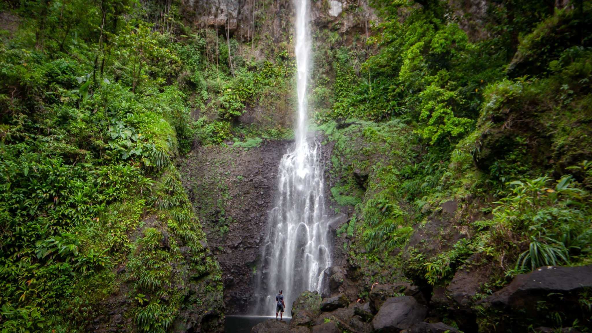 Waterfall crashes down with a man standing in front of the pool and the rainforest of Dominica on either side