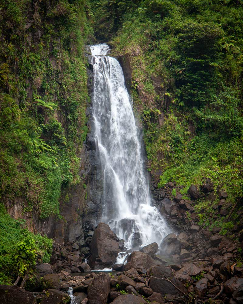 Traflagar Falls Waterfall in Dominica