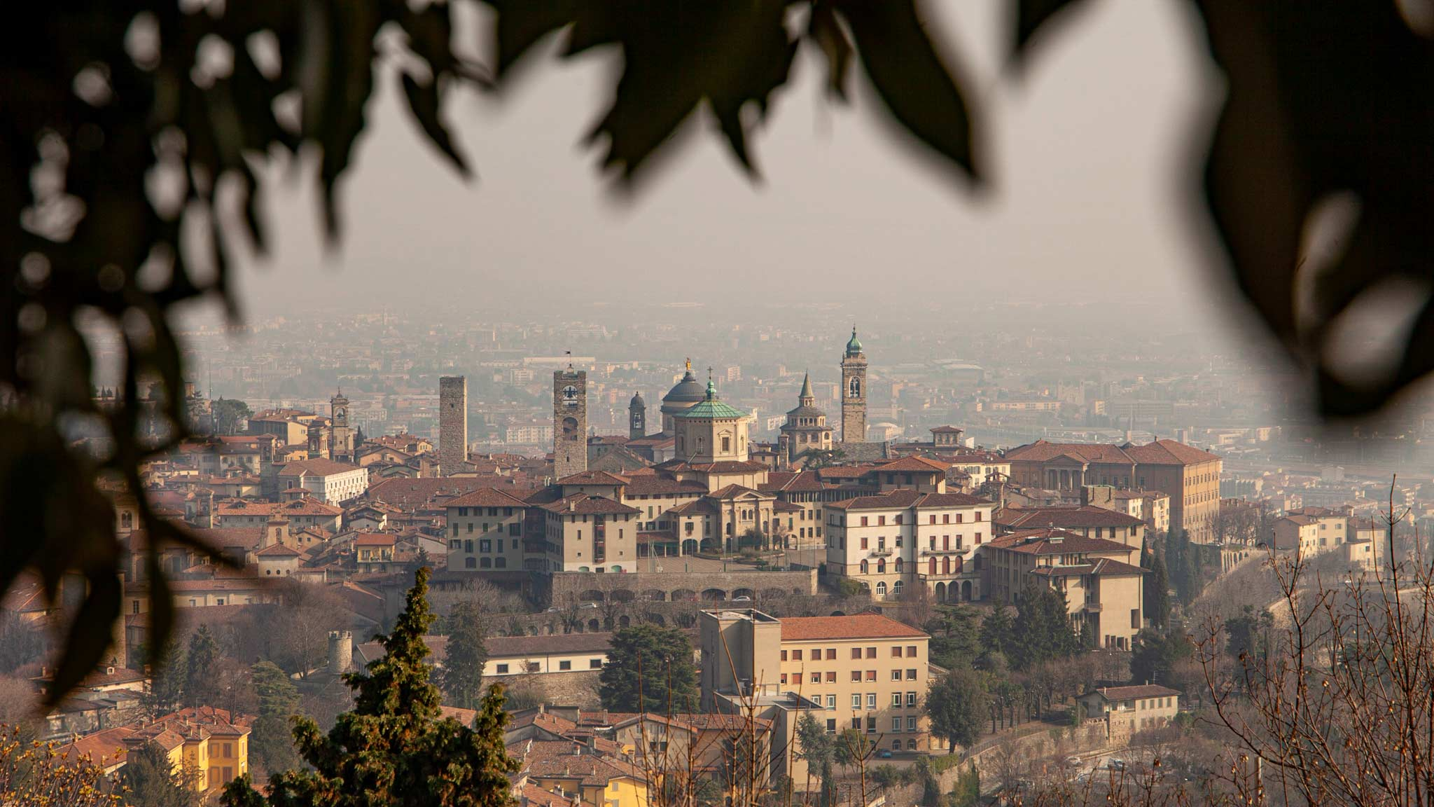The higher part of Bergamo as seen from afar at sunset, framed by a tree
