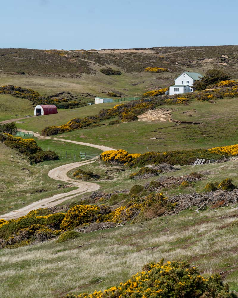 A picturesque farm at Roy Cover, West Falkland