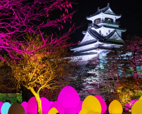 Kochi Castle TeamLab Digital Art