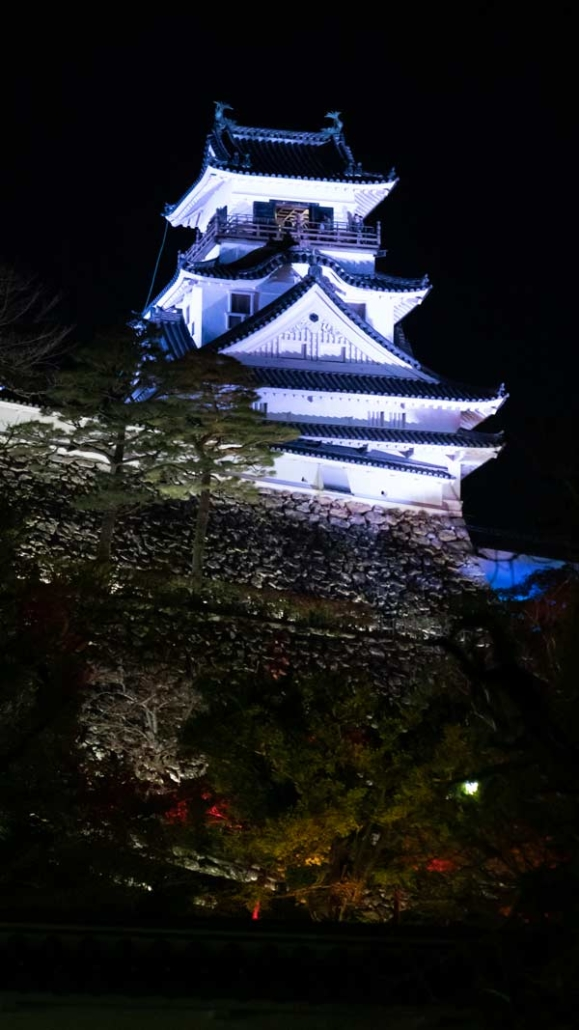 Kōchi castle stands above all the art work