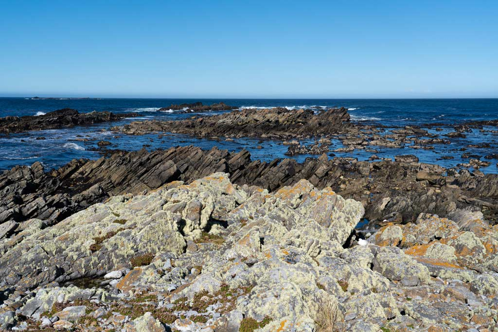 Rugged rocks provide a home for seals not far from Stanley and the Lighthouse