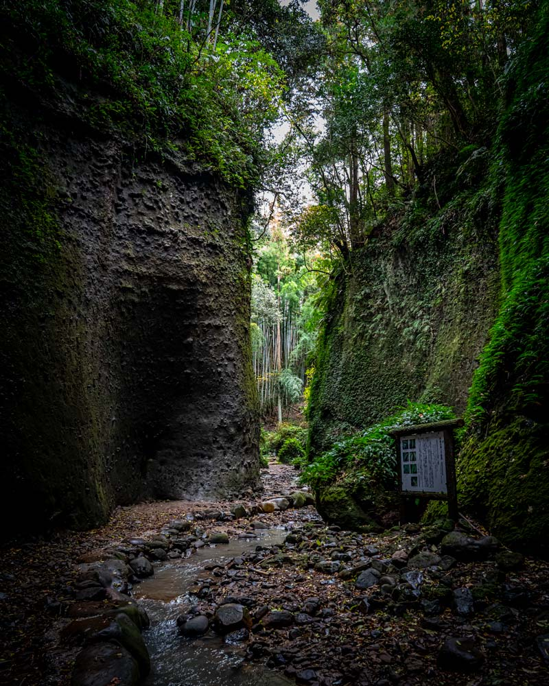 The green entrance of moss on rocks to the Ioki cave