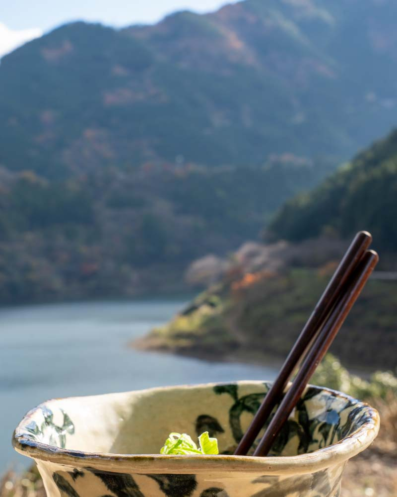 In the foreground is a bowl of Matcha green noodles, blurred in the background and Kochi's forested mountains