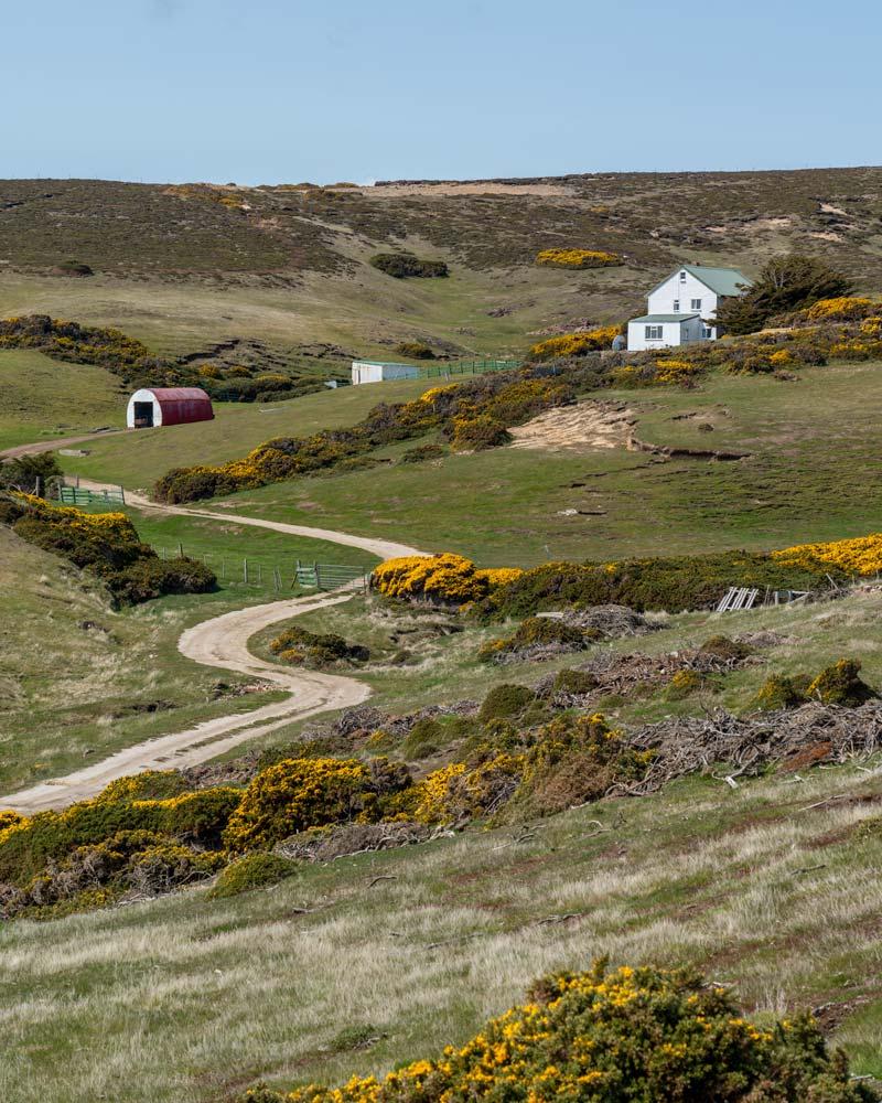 A farm on Roy Cove