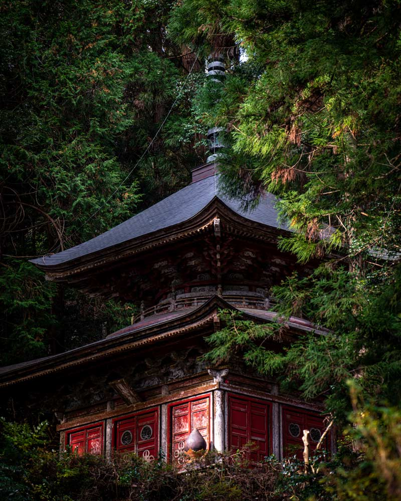 A red temple being retaken by nature in Sado Japan