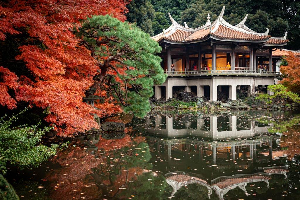 Ueno Park in autumn