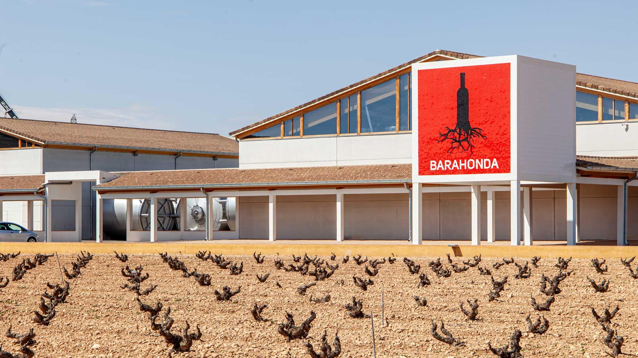 Barahonda Winery in Yecla, Murcia
