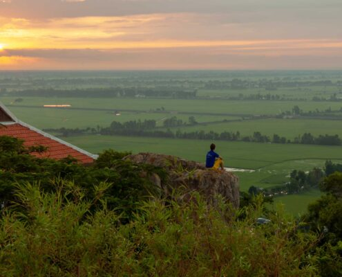 Green rice fields of Chau Doc as seen while perched on a rock