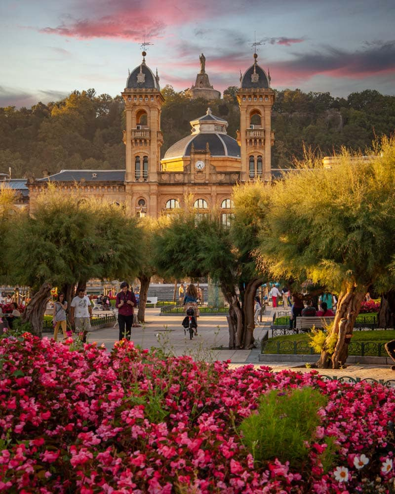 Sunset behind a grand building in San Sebastian with purple flowers in front
